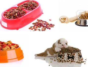 Hundefutter muss getreidefrei sein